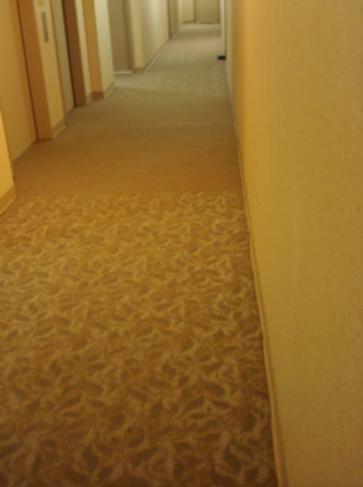 Bronx CC student's apartment hallway
